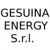 Gesuina energy